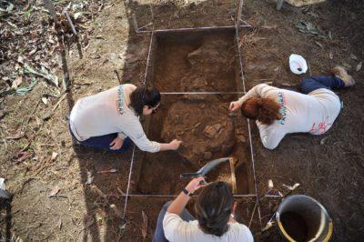 Chiavini & Santos conta com serviços de arqueologia